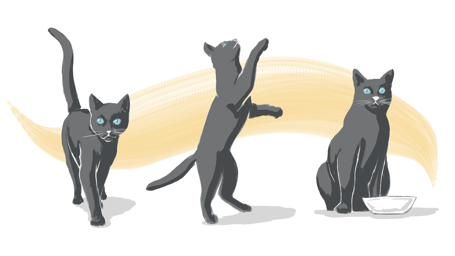 animated russian blue cat